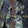 DSCF0302edited-rforsey-