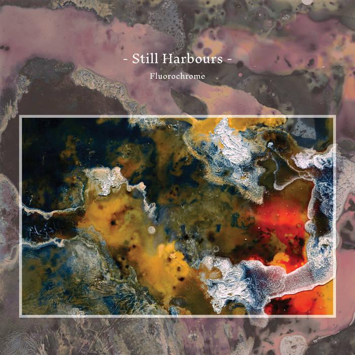 still harbours album image