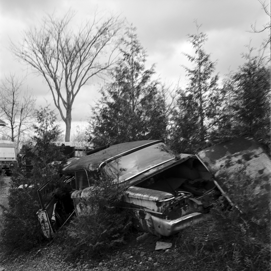 tree-crash-mccleans-v2